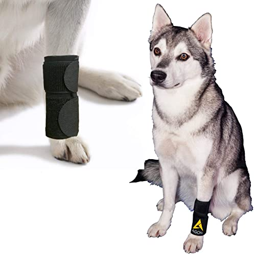 Agon-Dog-Canine-Front-Leg-Brace-Paw-Compression