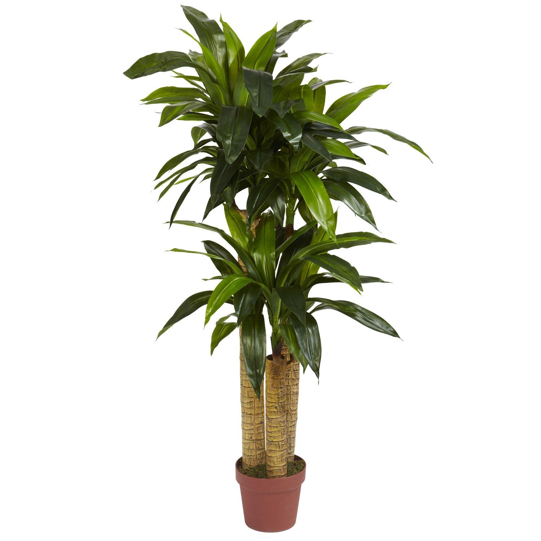 Nearly Natural 6648 Corn Stalk Dracaena Decorative Silk Plant, 4-Feet, Green