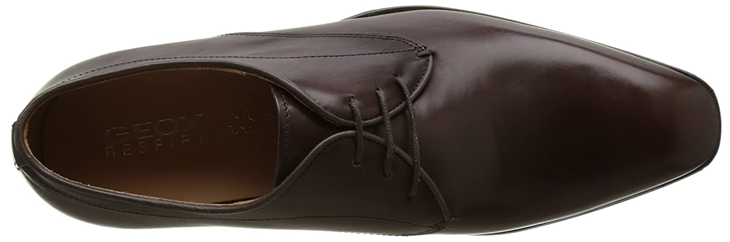 Derby Homme Geox U New Life A