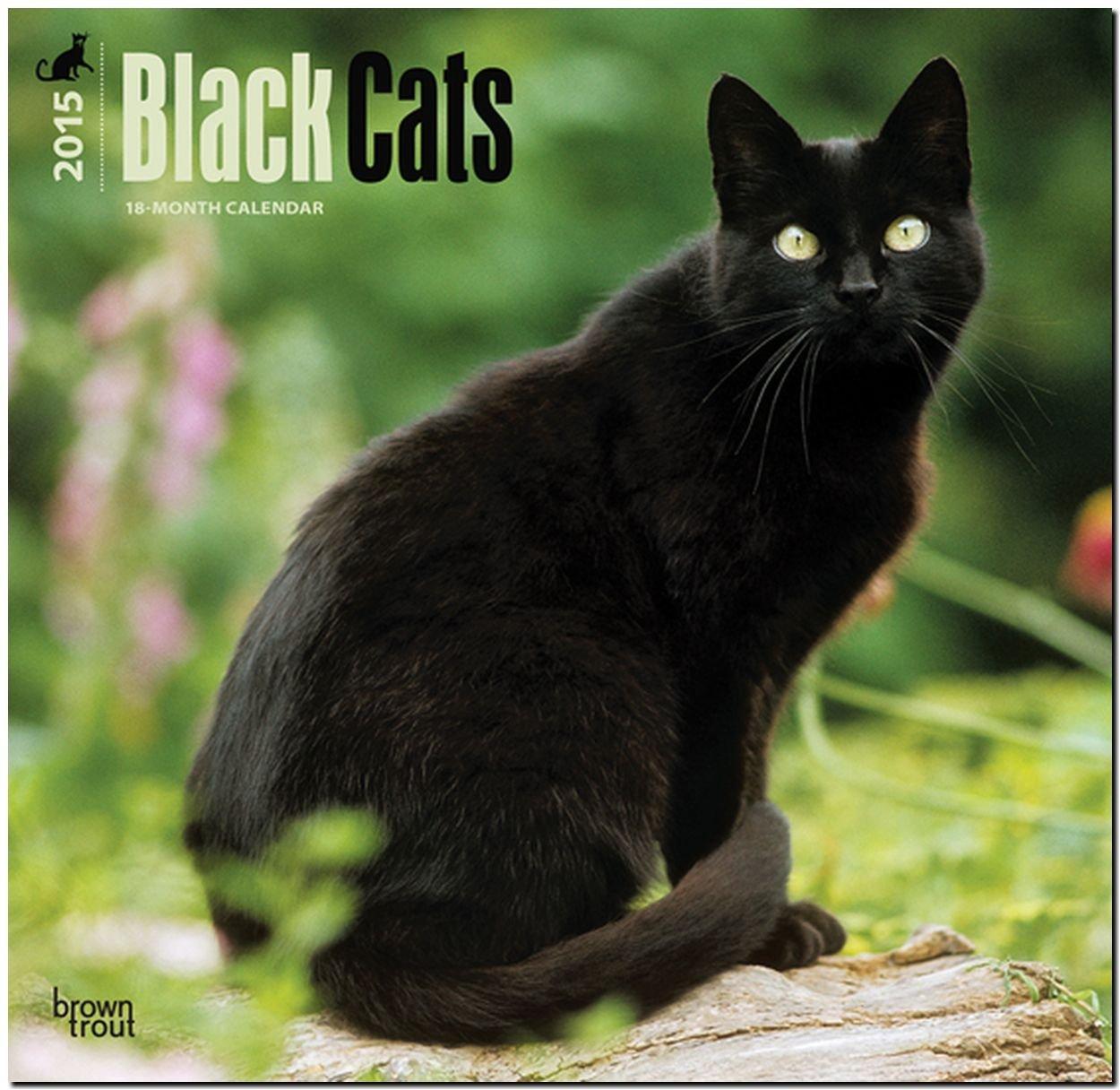 Download Black Cats 2015 Square 12x12 (Multilingual Edition) PDF