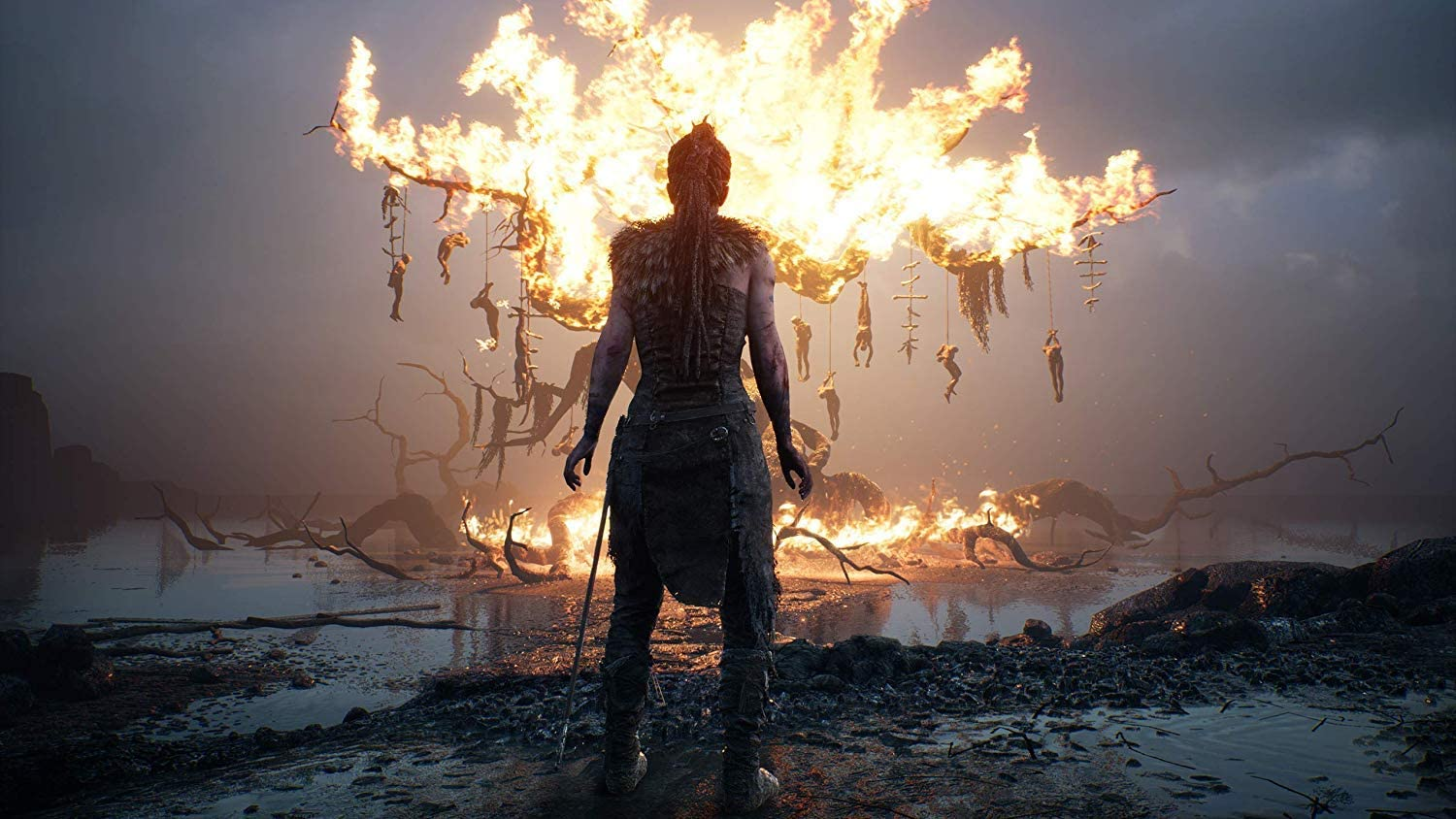 Amazon.com: Hellblade: Senuas Sacrifice - PlayStation 4 ...