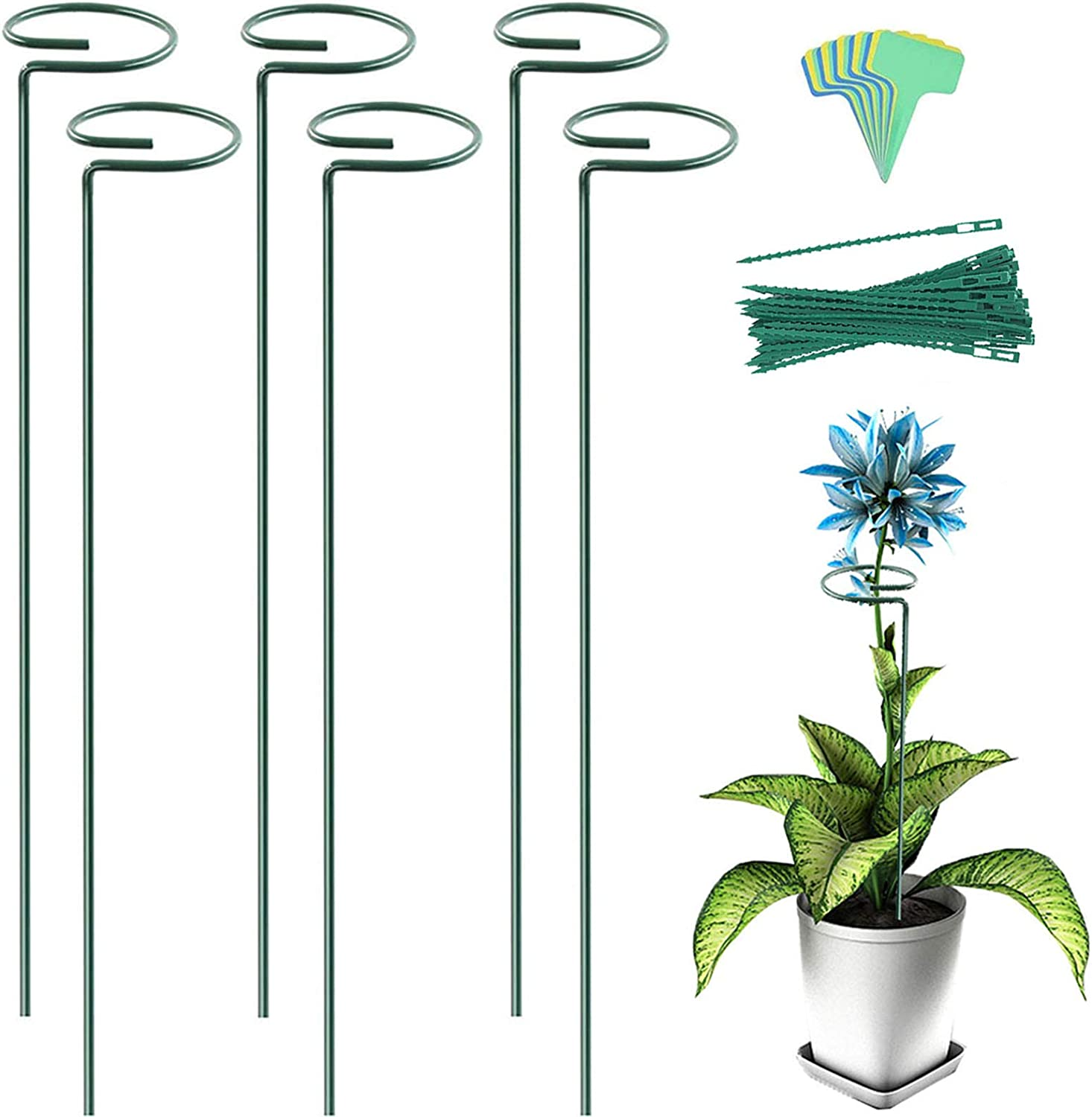 YEAJON 6 Pack Plant Support Stakes with 20 pcs Plant Labels, Garden Metal Single Stem Plant Cage Support Ring for Amaryllis Flower Tomatoes Orchid Lily Peony Rose Hydrangea(15.8inch)