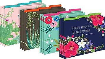 Decorative File Folders Letter Size, 12 Pack 1//3 Cut Tabs Cactus Succulents
