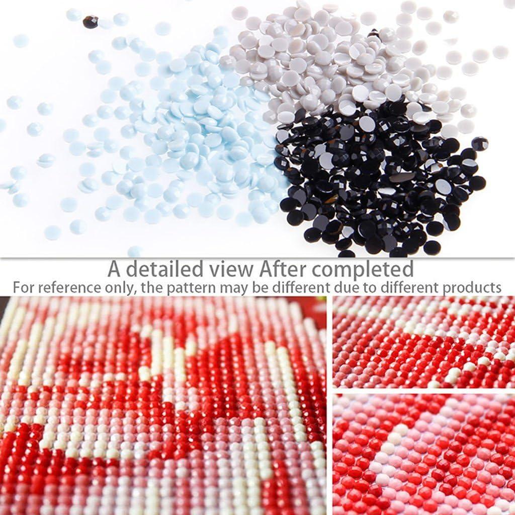 Dabixx 5D DIY Diamant Malerei Sch/ädel /& Motorrad 5D DIY Malerei Malen nach Zahlen Diamanten Stickerei Malerei Kreuzstich Kit DIY Home Decor 30 /× 40 cm