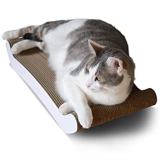 [superior cartón y construcción, mucho más dura alternativas]: Amazon.es: Productos para mascotas