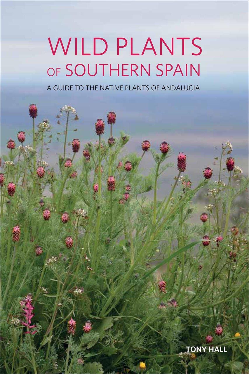Wild Plants of Southern Spain: Amazon.co.uk: Hall, Tony: 9781842466315:  Books