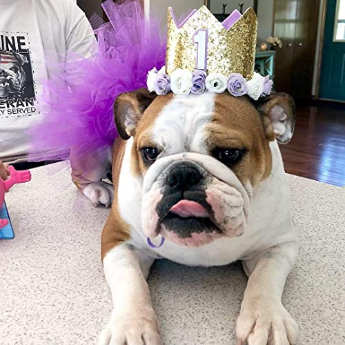 Amazon Pet Birthday Crown Dog Puppy Cat Party Hat Headband Accessory Floral Gold Purple White Handmade