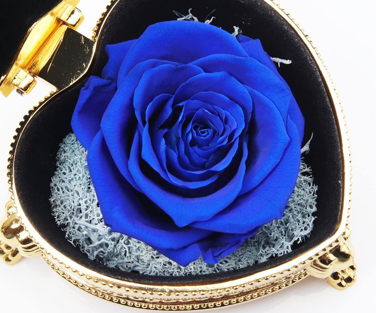 Mothers Day Valentines Preserved Rose Flower hey June Eternal Rose Blue Rose Upscale Immortal Flowers Mother Gifts for Christmas Birthday Gifts Gifts for Mom Anniversary