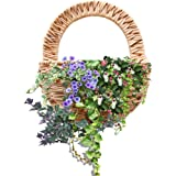 Hanging Basket Wall Mounted Rattan Braided Flower Pot Decorative Planter Vase Container For Indoor Outdoor Plants Natural Seagrass Hand Woven Art Door Home Decor Handmade Grass-rattan Plant Flow