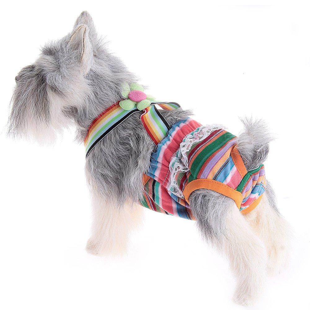 fitTek® FACILLA Braga Braguita Higiénica con Tirantes para Perros Mascota Talla 6: Amazon.es: Juguetes y juegos