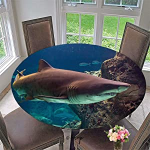 """AmaUncle Stain Resistant Elastic Edged Table Cloth Shark Underwater in Natural Aquarium Perfect for Home or Restaurants Table Protection, Round No110445 47"""""""
