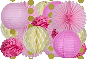 20 Pcs Tissue Paper Party Decorations in Pink, Ivory, and Gold -Includes 4 Fans, 4 Lanterns, 4 Honeycombs, 4 Pom Poms Flowers, and 4 Strings of Dot Garland for Birthday, Wedding, Baby Shower and More
