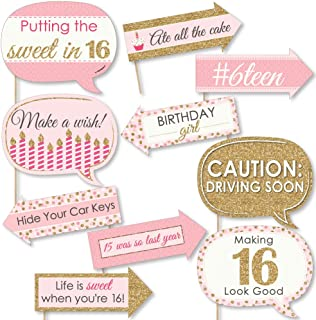 product image for Big Dot of Happiness Funny Sweet 16-16th Birthday Party Photo Booth Props Kit - 10 Piece