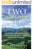 Two Million Steps: BAND-AIDS, COCKTAILS, AND FINDING PEACE ALONG SPAIN'S CAMINO DE SANTIAGO