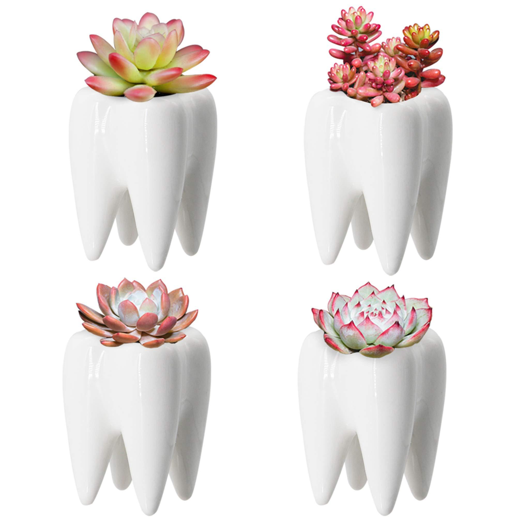 YOFIT Modern Style Teeth Pots Ceramic Flower Pot, White Succulent Cactus Bonsai Planter Container, Set of 4