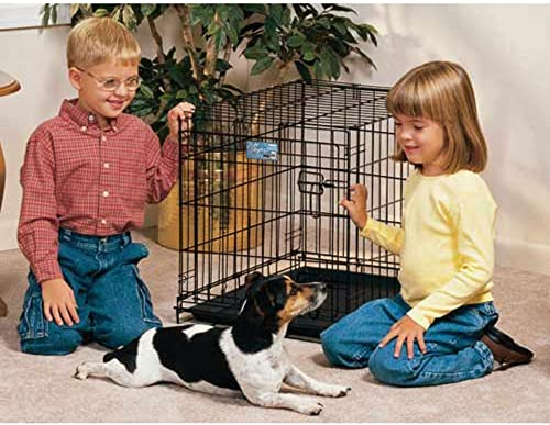 Midwest Life-Stages Folding Dog Crate 24 x 18 x 21
