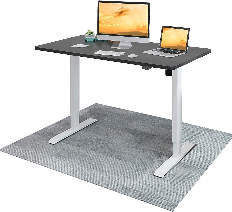 Flexispot EC1 Electric Standing Desk Height Adjustable Desk, Sit Stand Desk Home Office Workstation Stand up Desk (42x24 Black Desktop + White Frame)
