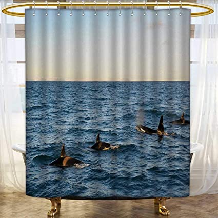 Whale Shower Curtains Sets Bathroom A Real Photo Image Of Four Killer Whales Coming Out