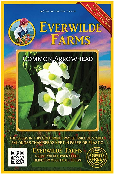 1500 Common Arrowhead Wildflower Seeds Everwilde Farms Mylar Seed Packet