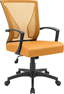 Furmax Office Chair Mid Back Swivel Lumbar Support Desk Chair, Computer Ergonomic Mesh Chair with Armrest (Orange)