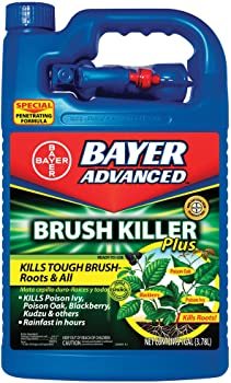 BIOADVANCED 1 Gallon Post-Emergent Weed And Brush Killer