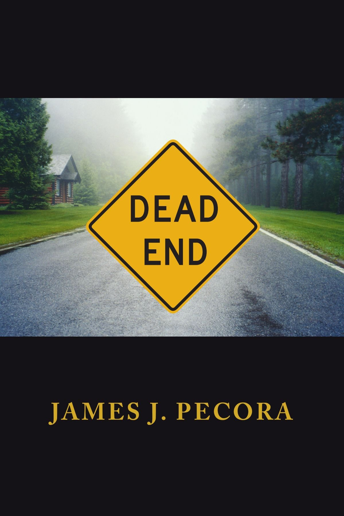 Dead End pdf epub