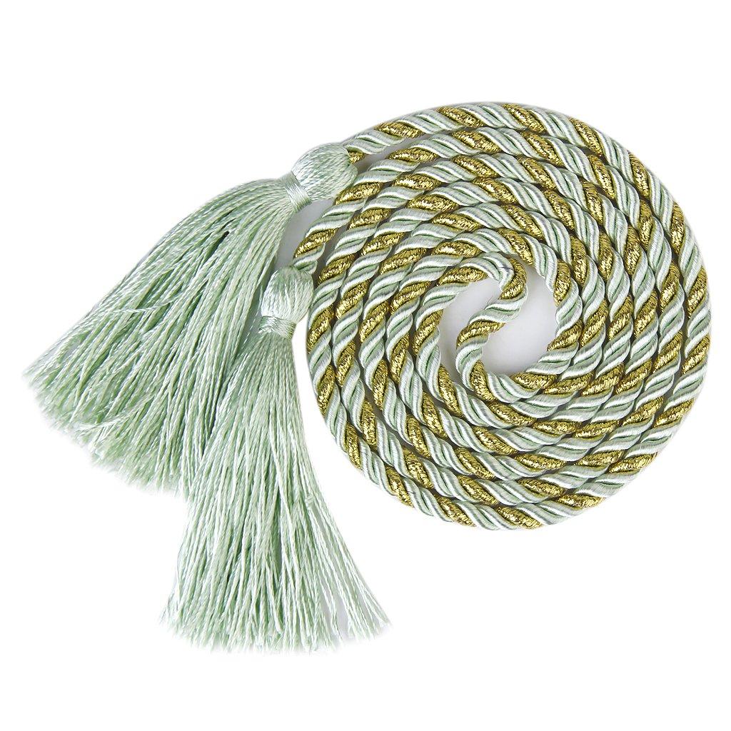 1 paire Embrasses à Rideaux Cordes de Franges pour Salon Chambre (Vert et d'or) Generic AEQW-WER-AW141172