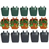 Minerva Naturals Vertical Pot (Set Of 15 - 3 Colors )Green:Brown