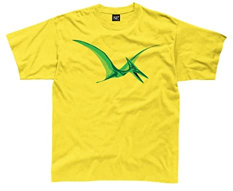 0d4a51093 Ripped Ink Clothing Co Pterodactyl Dinosaur Kids T Shirt: Amazon.co.uk:  Clothing