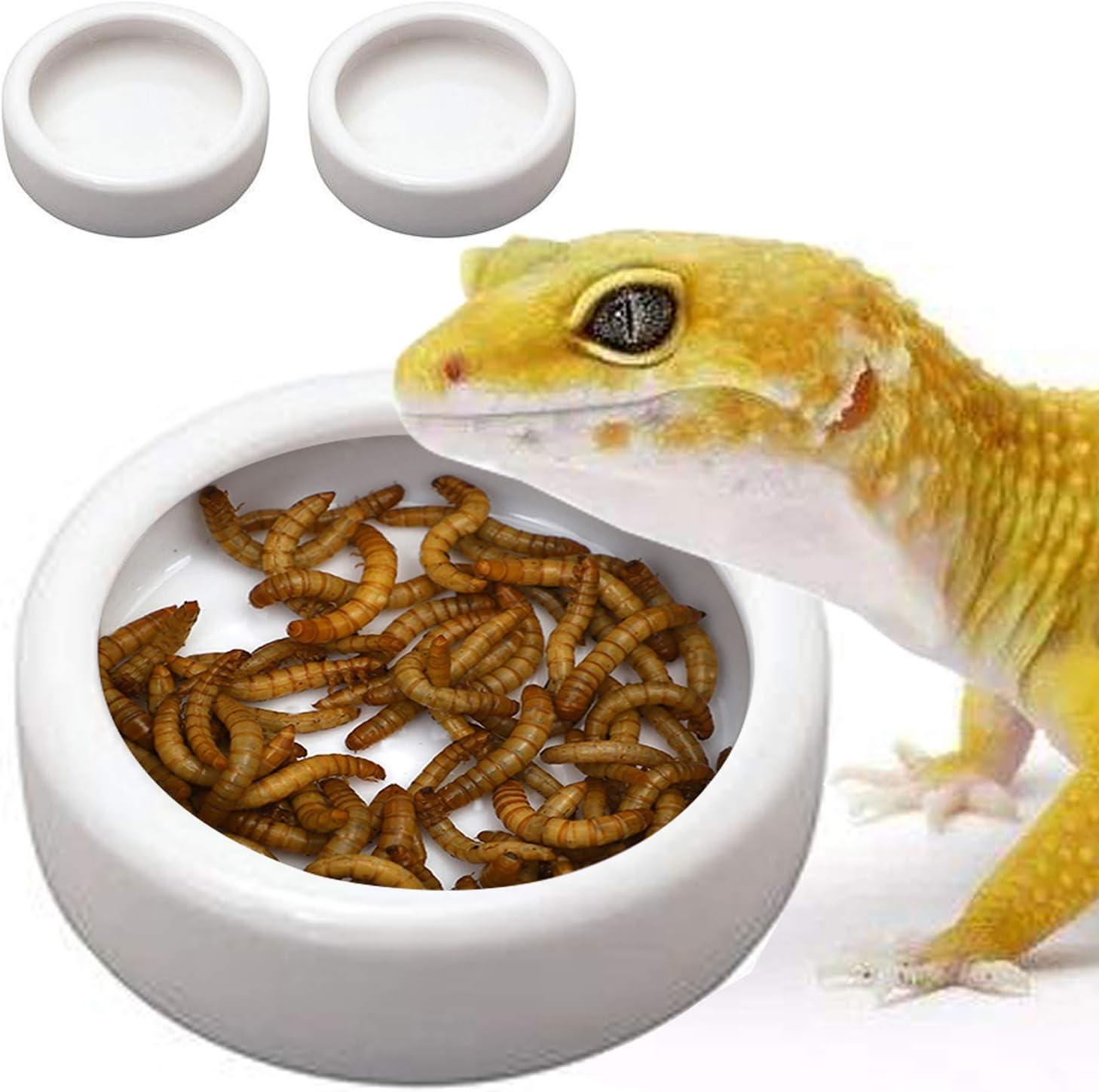 TDPET 2Pack Ceramic Mini Reptile Worm Dish - Lizard Escape Proof Feeding Bowl Circular (2Pack S, White)