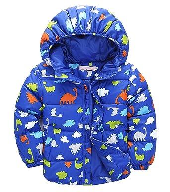 Taiycyxgan Little Boys Dinosaur Winter Coat Kids Warm Thicken Hooded  Outwear Jacket Blue 100 2ac7fb172