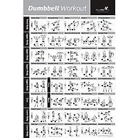 Dumbbell Workout Oefening Poster Gelamineerd - Kracht Training Grafiek - Bouw Spier, Toon & Tighten - Home Gym…