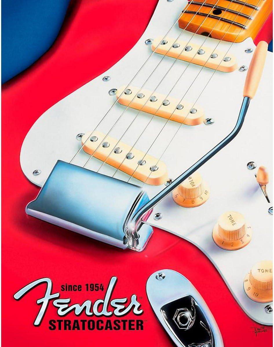 Desperate Enterprises Metal Sign - Defensa (Stratocaster): Amazon.es: Hogar