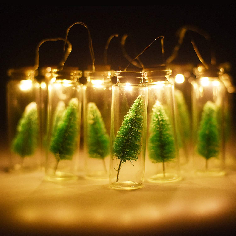 Adpoesk LEDStringLights3.3Ft with10Christ TreeBottlesforWishing,BestWisingLampforChildren'Gift, Parties(WarmWhite)