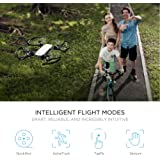 DJI Spark Intelligent Portable Mini Drone,Palm launch Mini Quadcopter, Alpine White