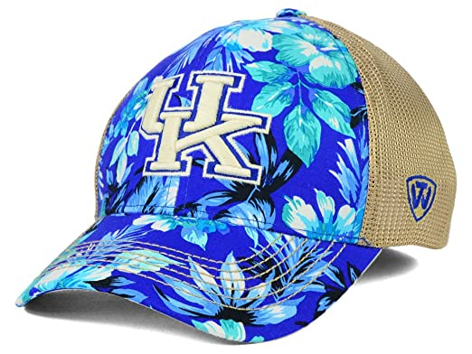 separation shoes 9a548 81412 Image Unavailable. Image not available for. Color  Top of the World  Kentucky Wildcats NCAA Shore Stretch Cap