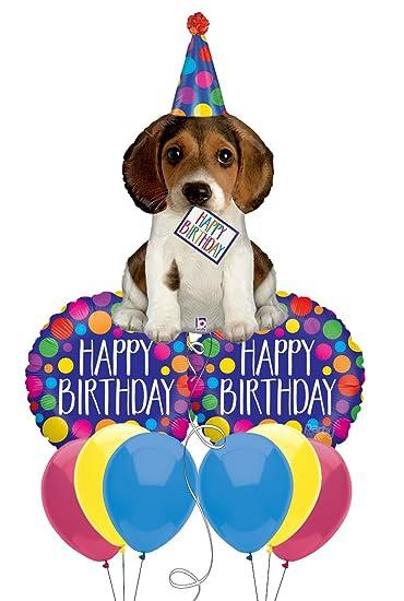 happy birthday beagle Amazon.com: Beagle Puppy Happy Birthday Balloon Bouquet: Health  happy birthday beagle