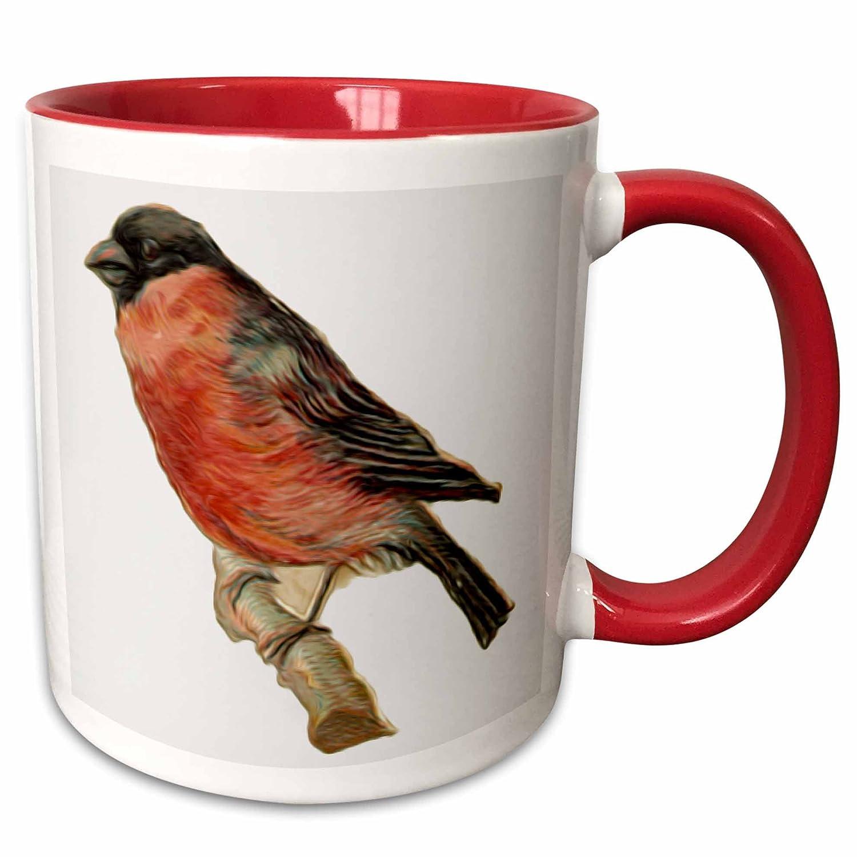 3dRose 104659/_2 Vintage Perched Red Robin Bird Illustration Ceramic Mug 15 oz White mug/_104659/_2