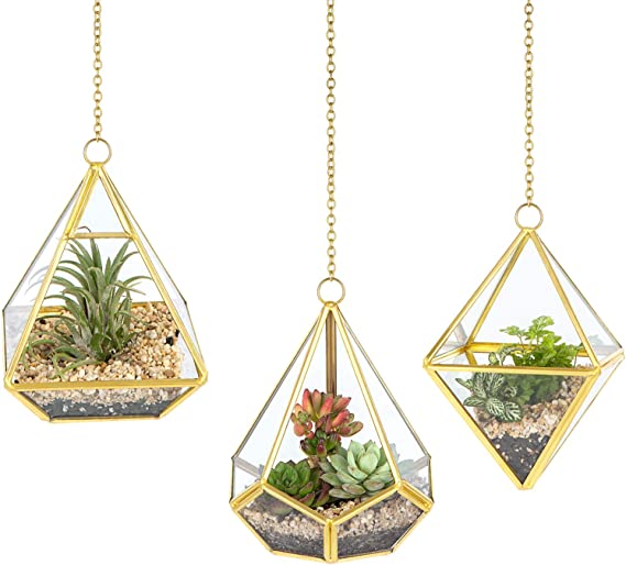 3 Piece Small Hanging Glass Terrarium