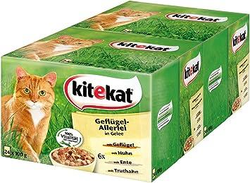 Kitekat Katzenfutter Geflugel Allerlei In Gelee 48 Beutel 2 X 24