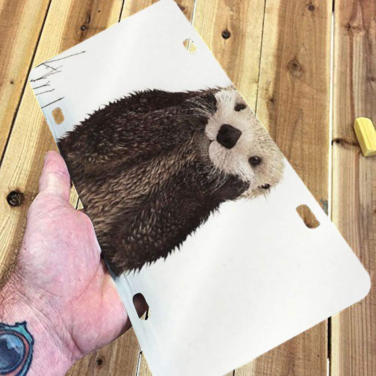Sloth Just Hanging Around Novelty Metal Vanity Tag License Plate