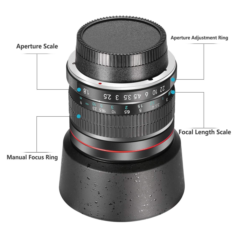 Neewer 85mm f//1.8 Portrait Aspherical Telephoto Lens for Nikon D5 D4S DF D4 D810 D800 D750 D610 D600 D500 D7200 D7100 D7000 D5500 D5300 D5200 D5100 D3400 and D3100 DSLR Cameras Manual Focus HD Glass