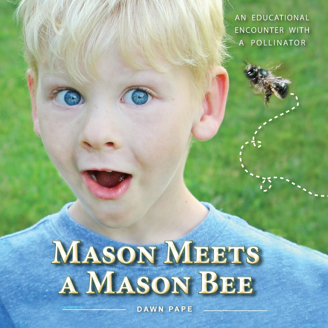 Download Mason Meets a Mason Bee: An Educational Encounter with a Pollinator pdf