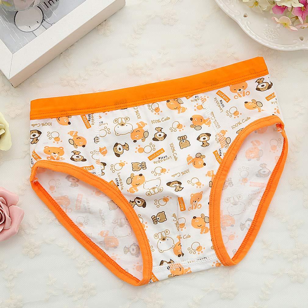 Geschenkbox Paket LORYLOLY 4er Pack Slips Jungen Gr/ö/ße 2-10 Jahre Kleinkind Babys 100/% Baumwolle Unterhosen Jungs Unterw/äsche Kinder