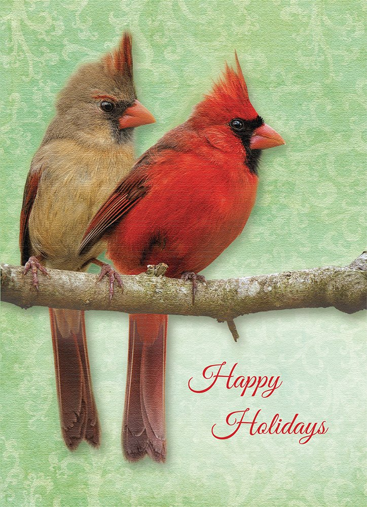 Tree-Free Greetings Christmas Cards and Envelopes, Set of 10, 5 X 7-Inch, Christmas Cardinals (HB93325) Tree-Free Greetings Canada