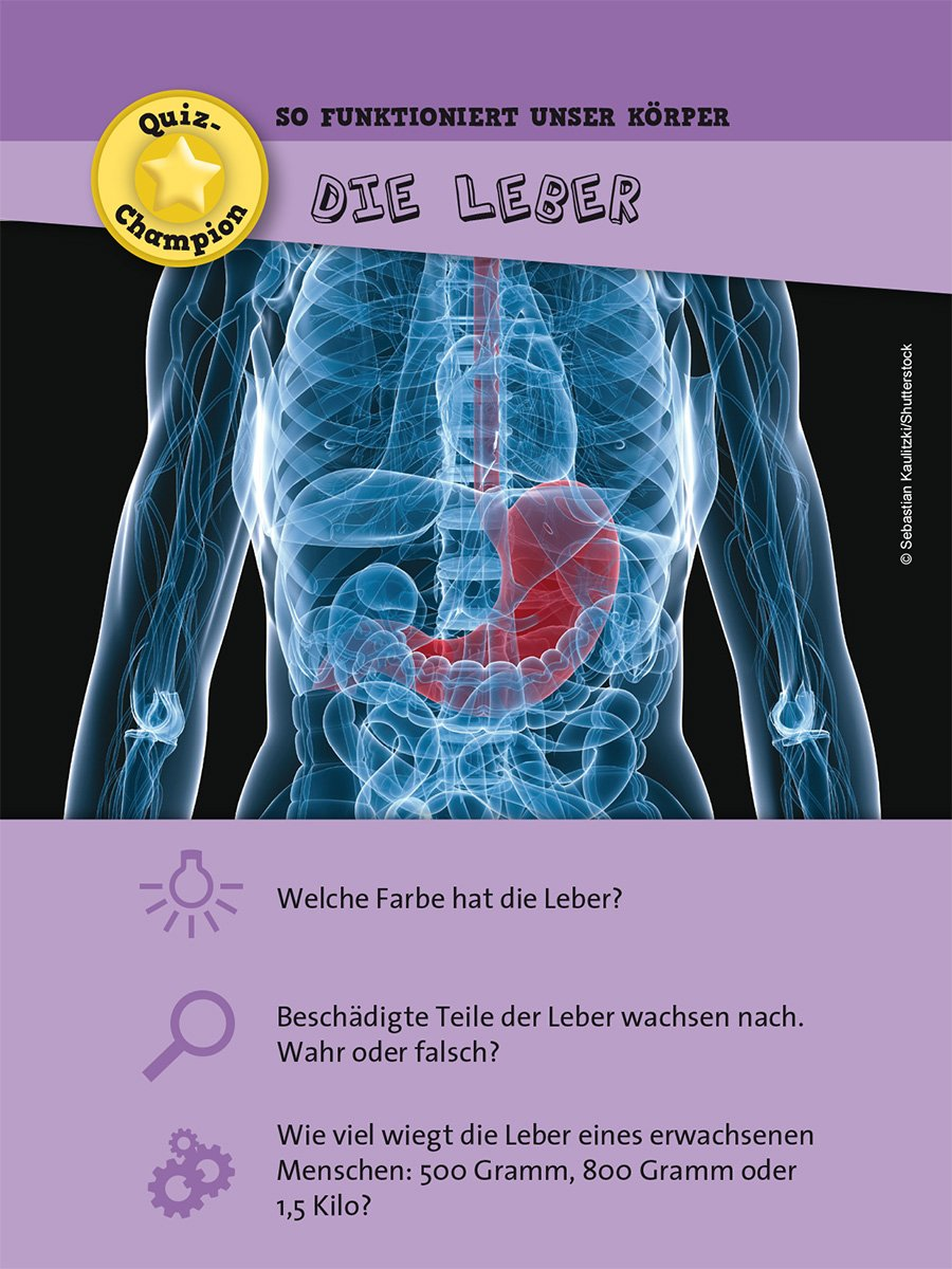 Schön Grundlagen Der Menschlichen Anatomie Und Physiologie Sechste ...