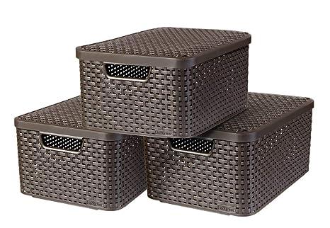 Amazon.com: Curver 240655 - Caja de almacenaje (plástico ...