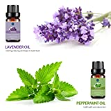 Lagunamoon Essential Oils Top 6 Gift Set  Pure