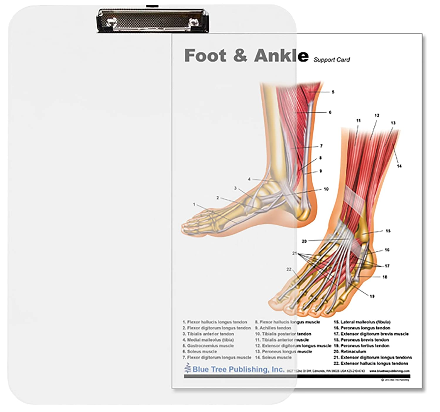 Amazon Foot Ankle Insert Clipboard Industrial Scientific