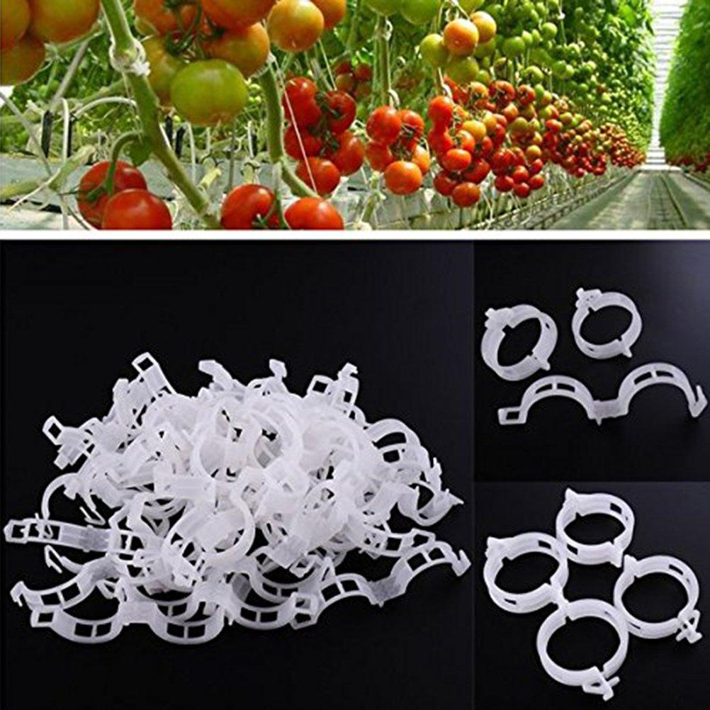 OUNONA 100pcs Orto de tomate joyas clip de plantas de soporte ...